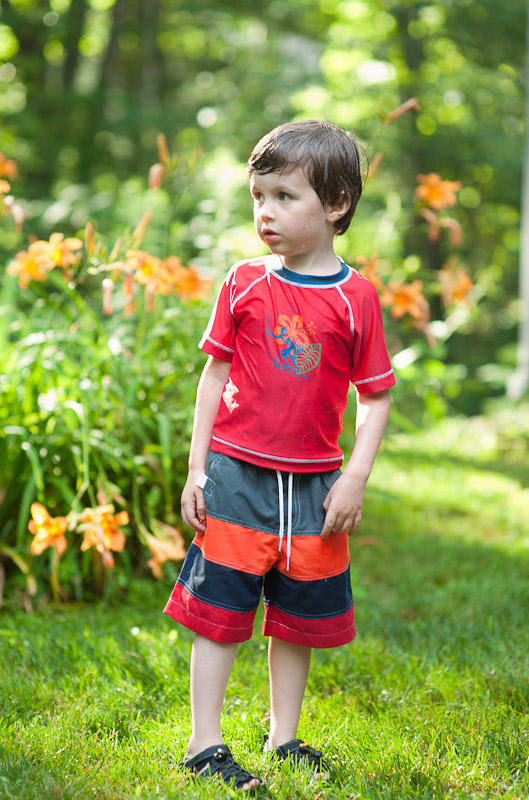 boy in red shirt with tiger lilies